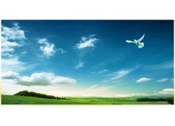 蓝天草原风景图片
