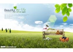 草地木椅绿叶psd素材