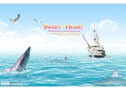 海豚轮船psd素材