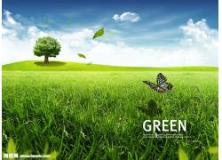 草地大树绿叶风景psd素材