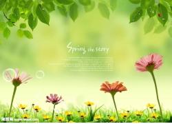 绿叶花朵psd素材