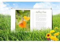 草地 花朵风景PSD素材