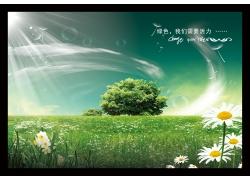 绿草地 树木 花PSD素材