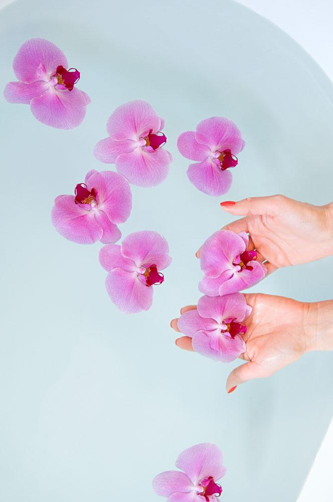 放花瓣SPA沐浴高清素材图片