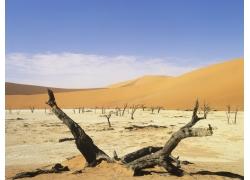 大沙漠风光摄影