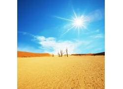 沙漠美丽风景
