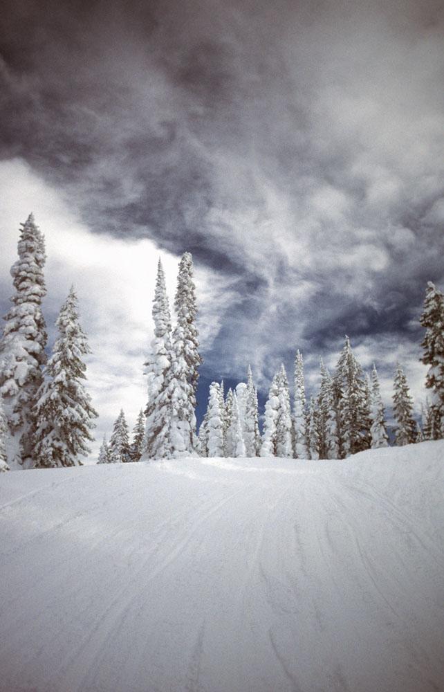 自然雪景摄影图片图片