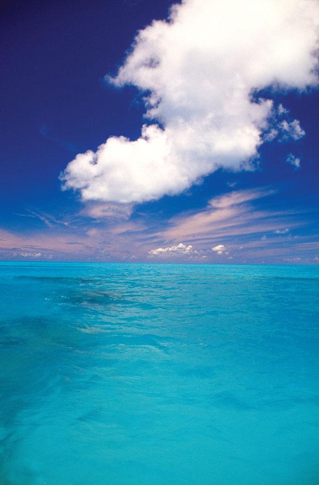 海洋摄影图片素材图片