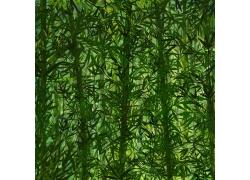 美丽竹林风景PSD分层素材