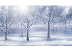 冬天美丽雪景
