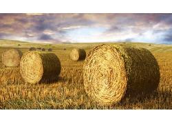 原野干草堆素材