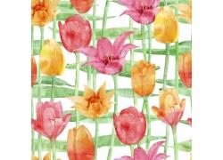 水彩鲜花图案