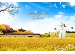 美丽稻田风景