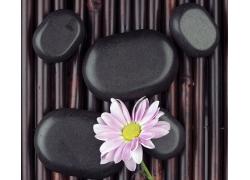 鹅卵石上的鲜花