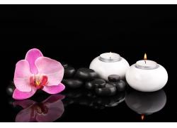 美丽鲜花与水疗石