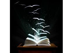 飞翔的书本