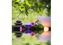 石头鲜花与梦幻背景