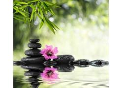梦幻光斑与石头鲜花