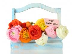 母亲节鲜花礼物