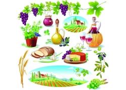 食物水果背景素材