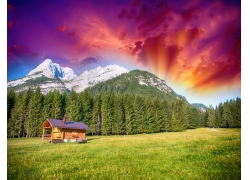 高山前的树林草地木屋