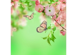 鲜花蝴蝶梦幻背景素材